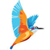 Kingfisher Airlines Logo