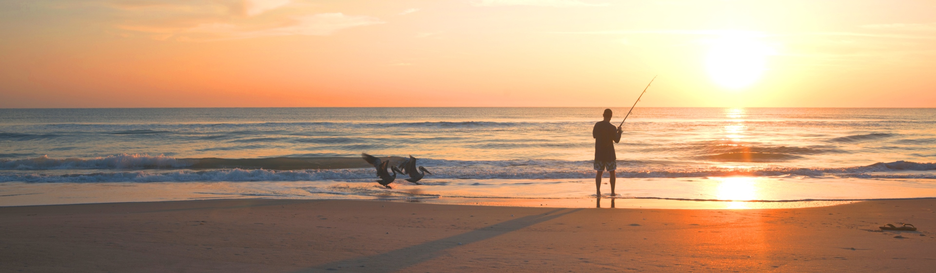 Man fishing on a Florida beach at sunset with two pelicans.