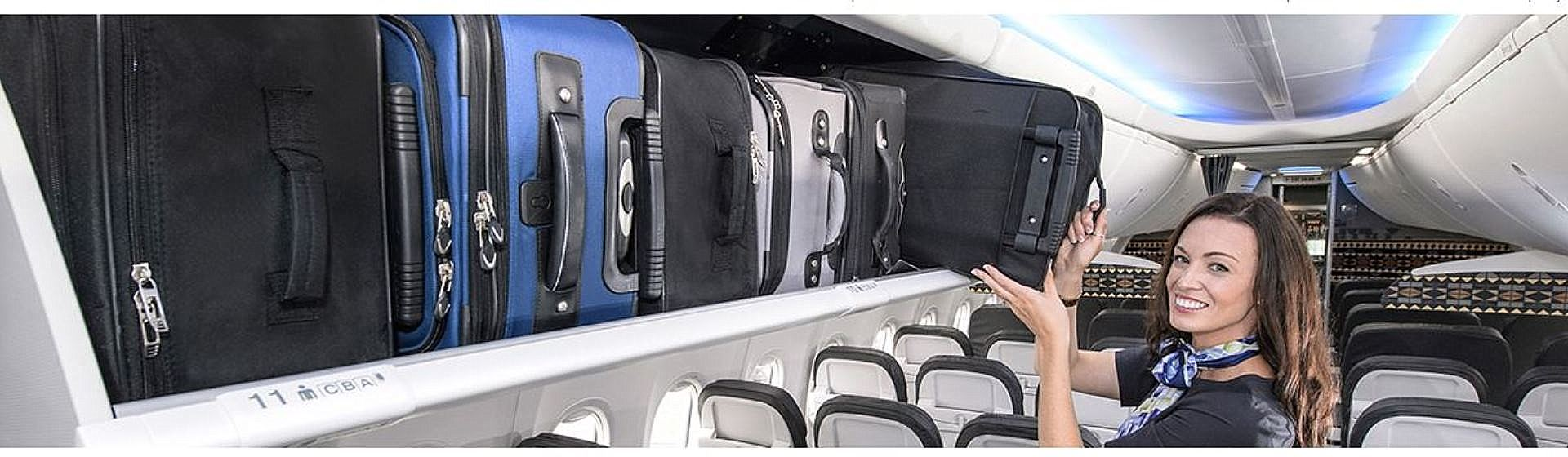 Boeing Space Bins
