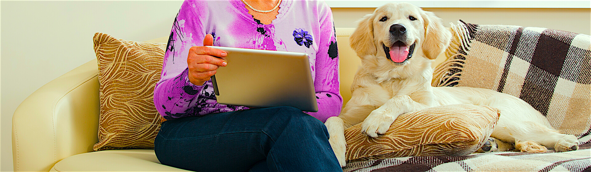 Shopping on couch with dog
