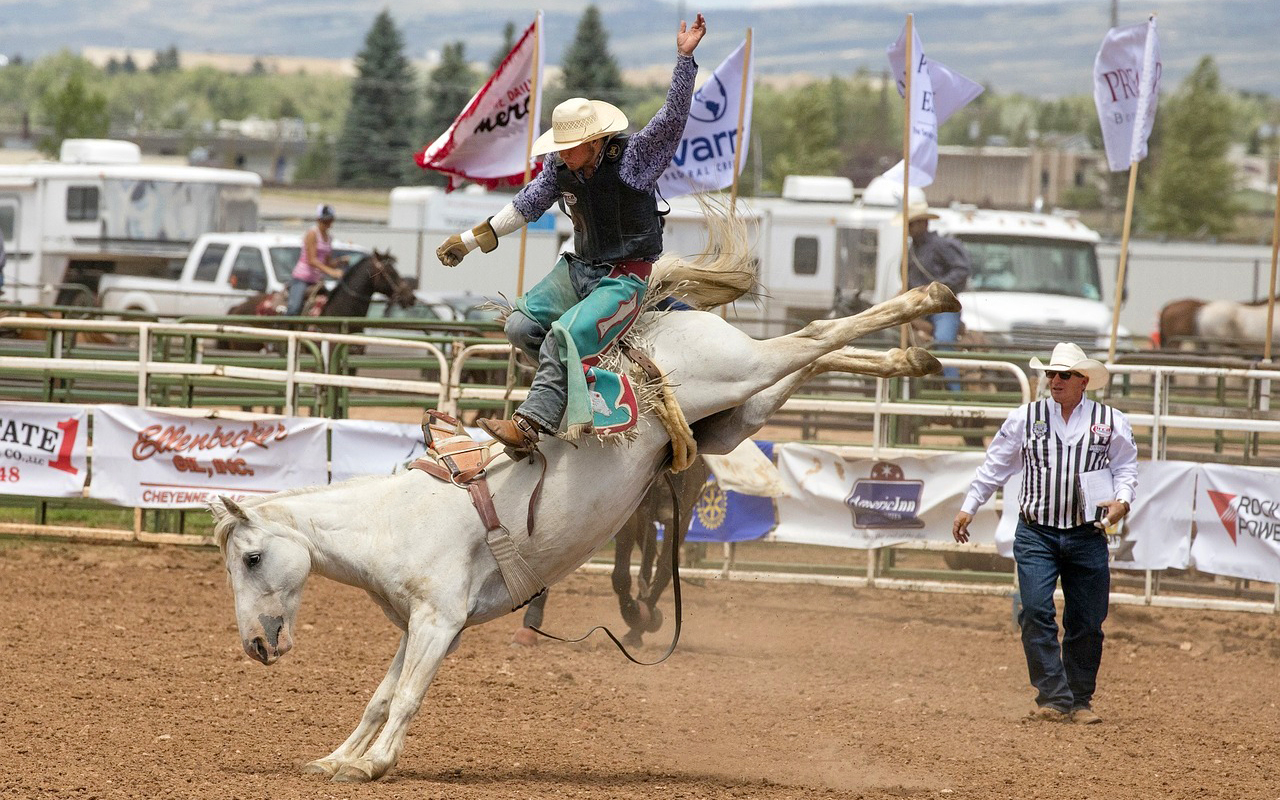 2018 Best Events - Rodeo