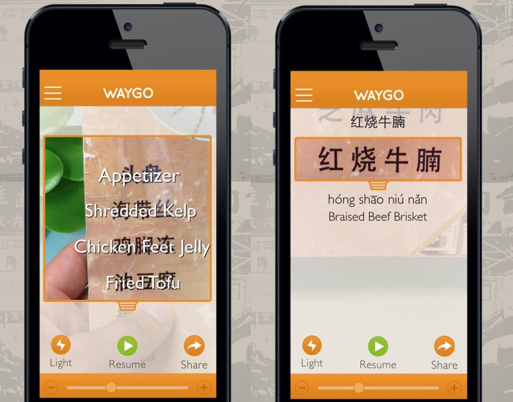 waygo translation app